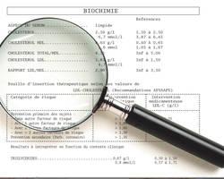 bilan-lipidique-cholesterol-soignez-vous.com