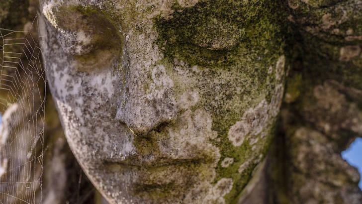 Les remèdes naturels contre le lichen plan