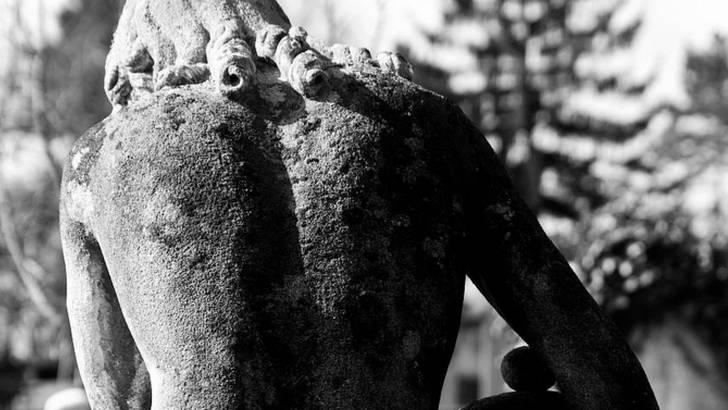 Lichen dans le dos