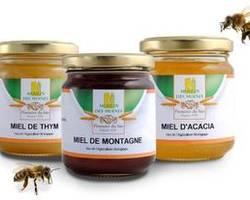 Le miel, votre allié santé !