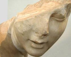 Des traitements phyto pour la migraine