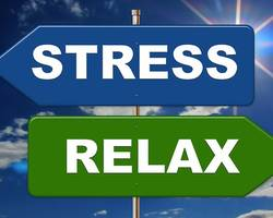 Stress : des nutriments pour éviter la spirale