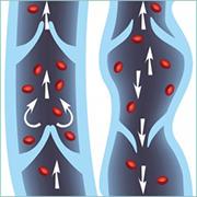 4 compléments naturels pour améliorer votre circulation sanguine