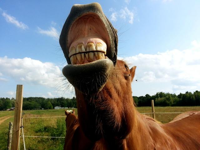 Témoignage : Parodontose et déchaussement dentaire